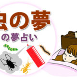 虫の夢や虫を退治する夢の夢占い
