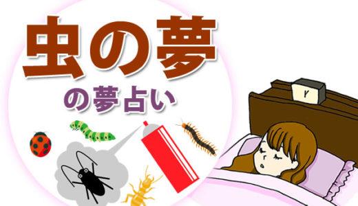 【夢占い】虫の夢や虫を退治する夢の意味は?見たことない虫・ゴキブリ・ウジ虫・芋虫などそれぞれ警告を暗示