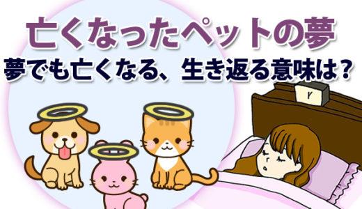 【夢占い】亡くなったペット(犬・猫など)の夢は「愛着や愛情」を暗示!夢でもまた亡くなる、生き返る意味は?